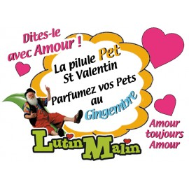 La Pilule Pet du St Valentin au gingembre